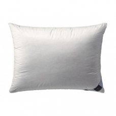 Pillow Billerbeck Ambiente